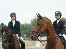 Zawody konne w skokach przez przeszkody